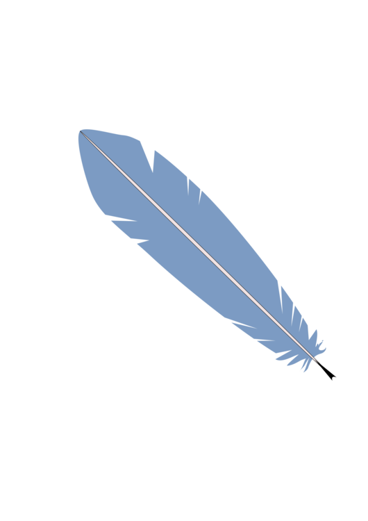 File vector feather. Bird quill blue pens