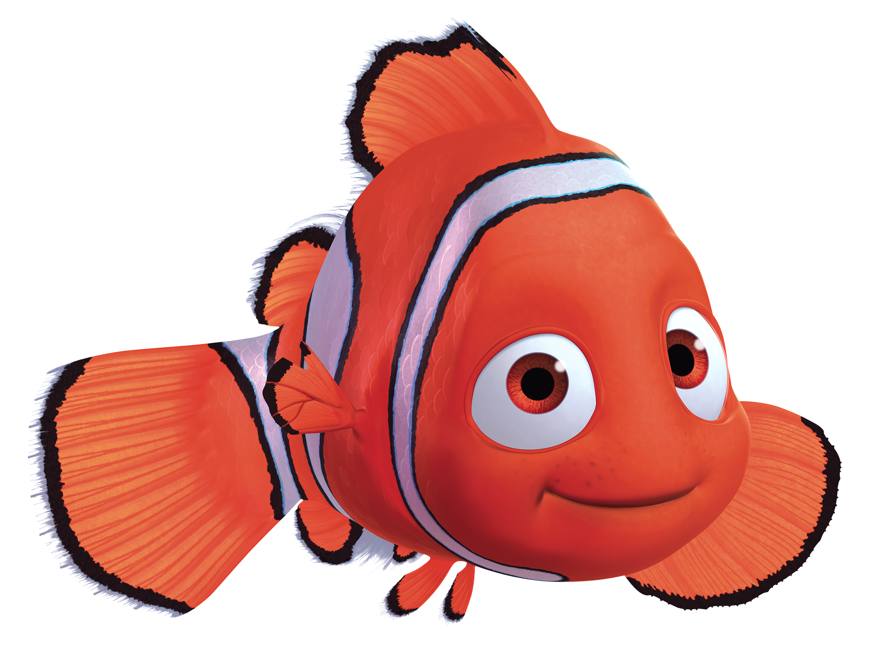 Finding dory seasweed and coral png. Image nemo fn pixar