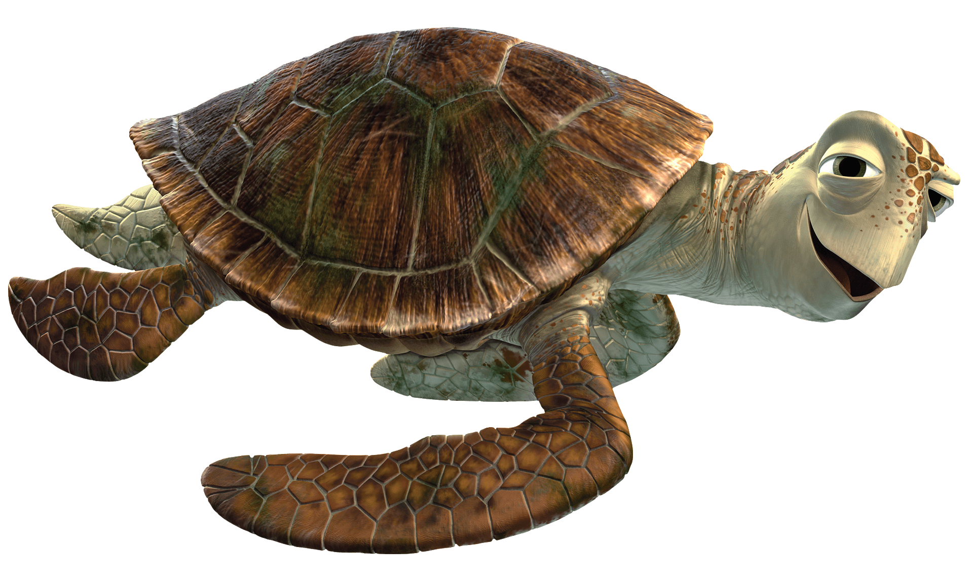 Finding dory transparent png turtle. Nemo images stickpng bruce