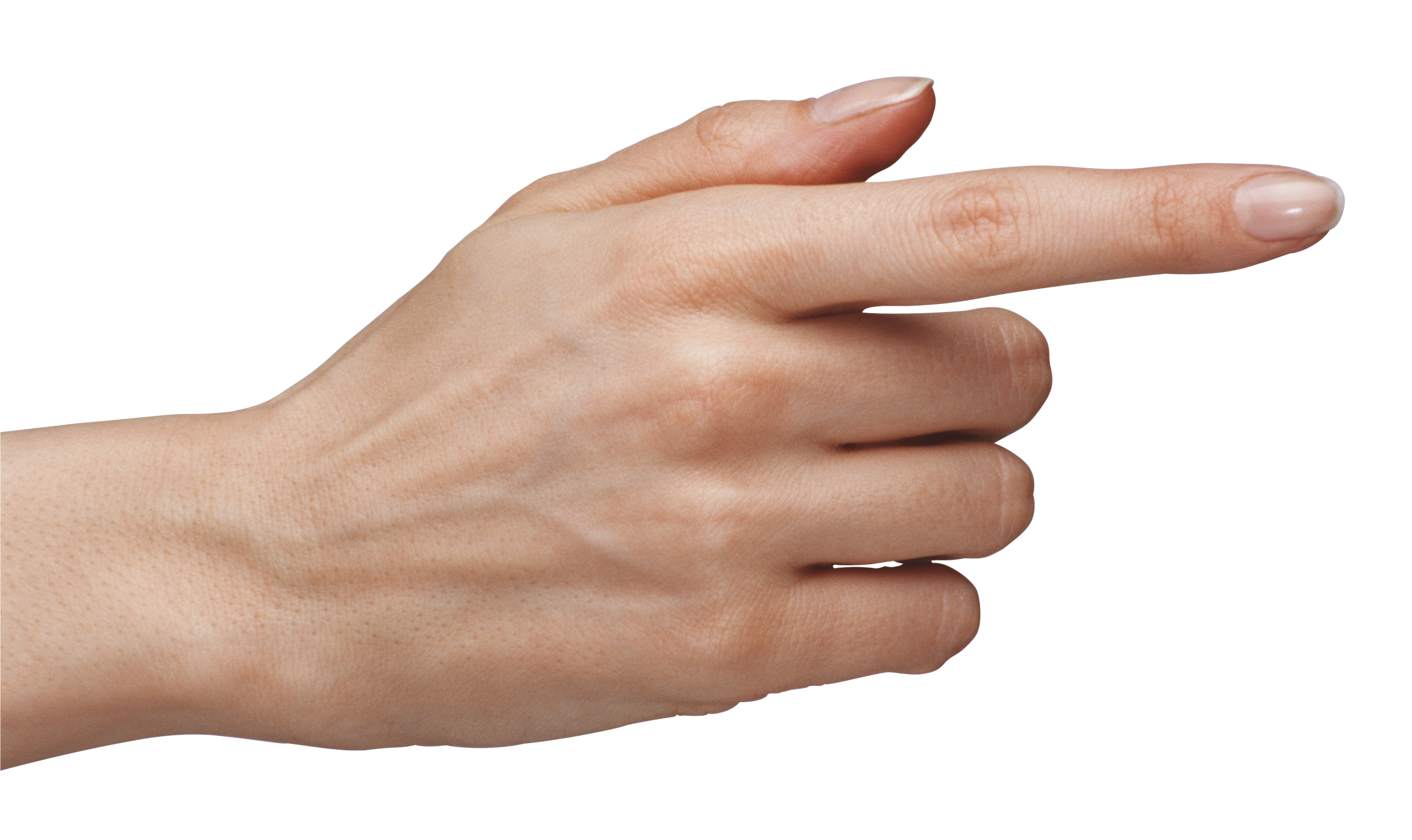 Finger clipart png. Collection of high