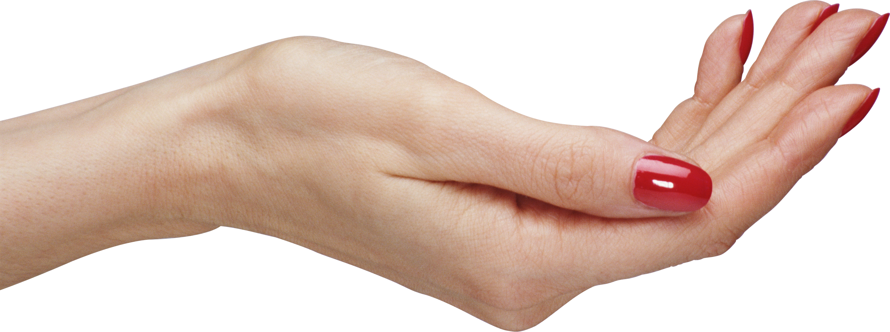 Open palm png. Hands image purepng free