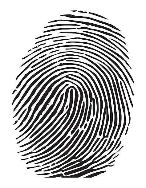 Fingerprint clipart clip art. Group royalty free vector