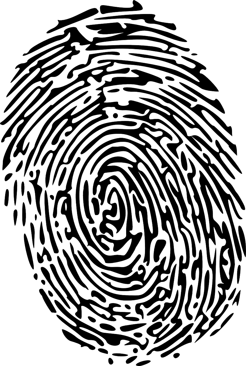 Fingerprint clipart identity. Cathedral of mary our