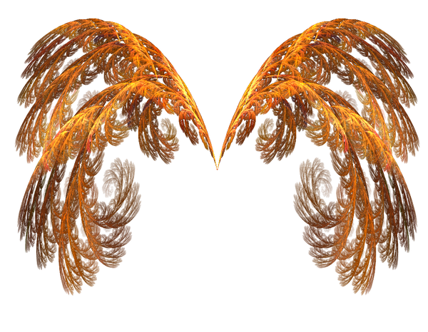 Fire wings png. Of by notpeople stock