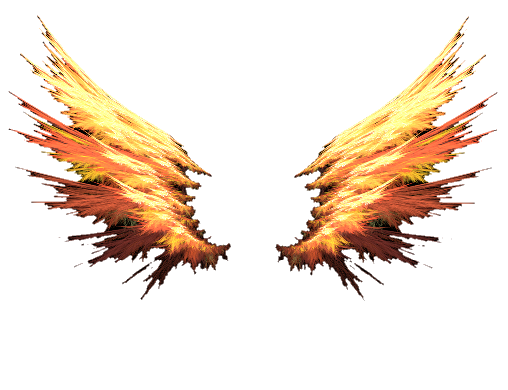 Fire wings png. Red orange colorful cute