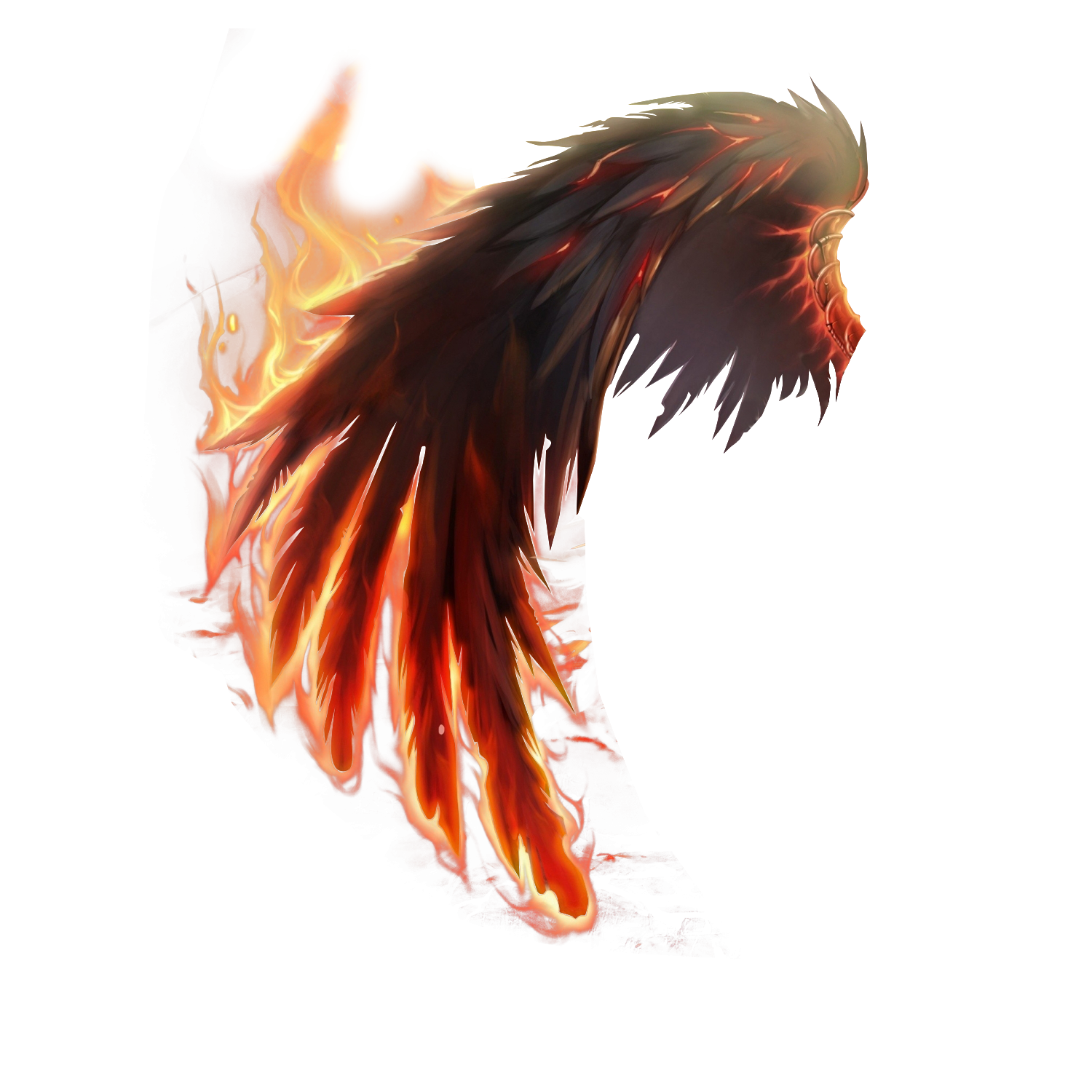 Fire wings png. Wing art pinterest wingpng