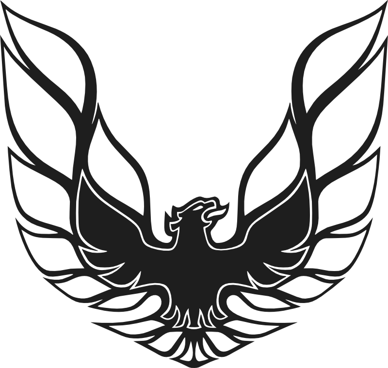 Firebird drawing. Trans am stencil google