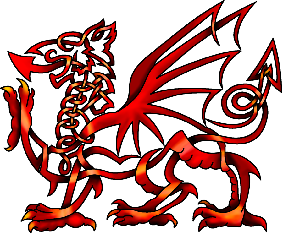 Firebird drawing celtic. Knot welsh dragon by