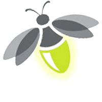 Firefly clipart. Download free png photo