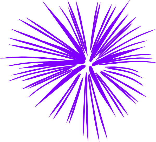 Firecracker vector firework. Purple fireworks clip art