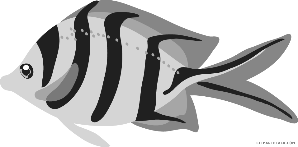 Fish claw. Picture transparent download page