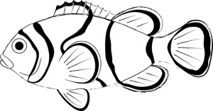 Fish clip art black and white. Clown clipart panda free