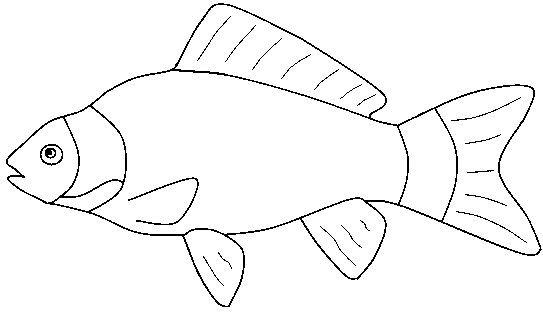Fish clip art coloring page. Pages for preschool and