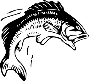 Fish clip art public domain. Jumping at clker com