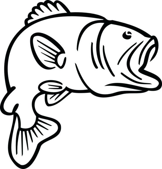 Outline bass . Fish clip art simple image black and white download