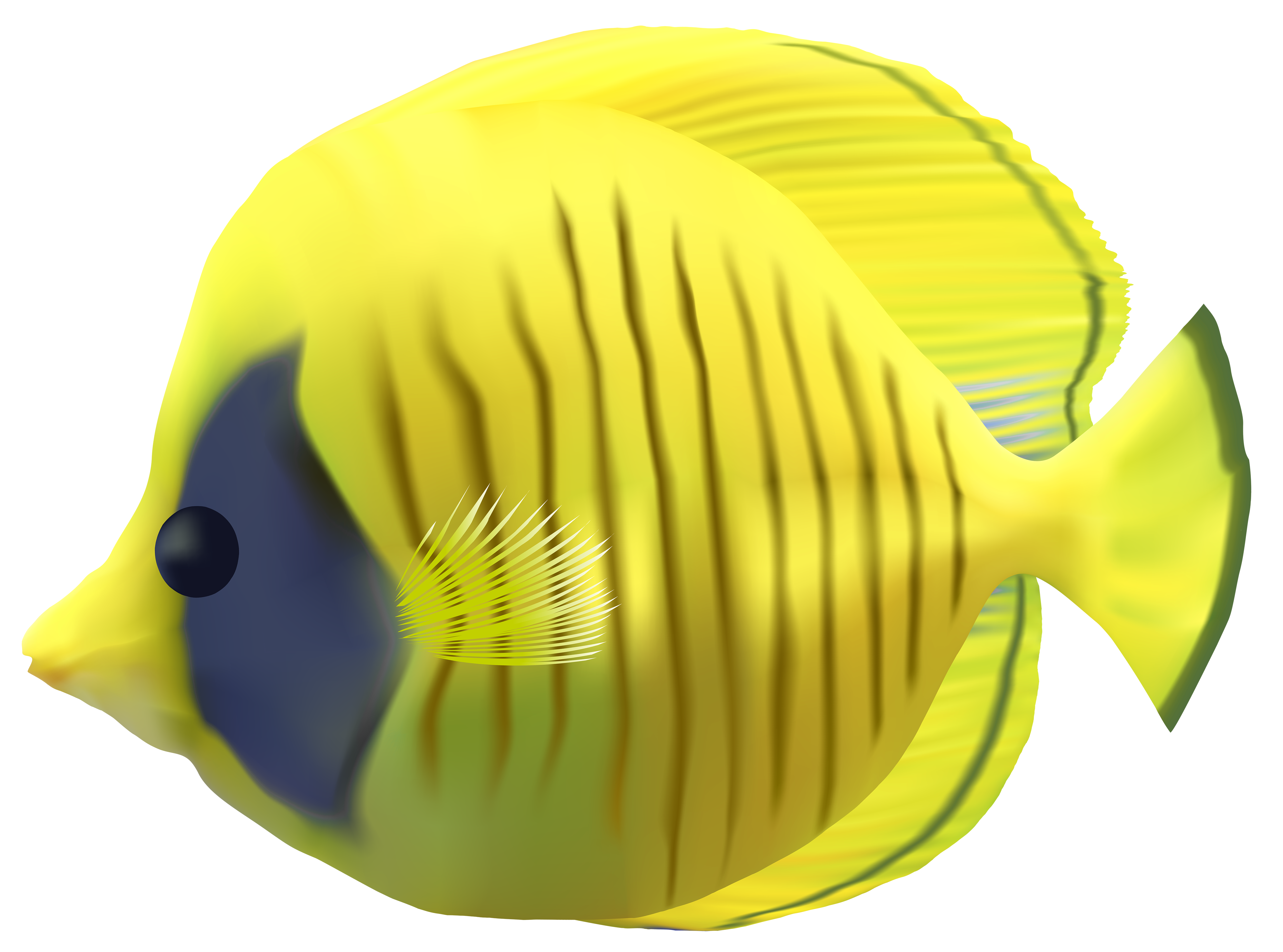 Fish clip art transparent background. Yellow png image gallery