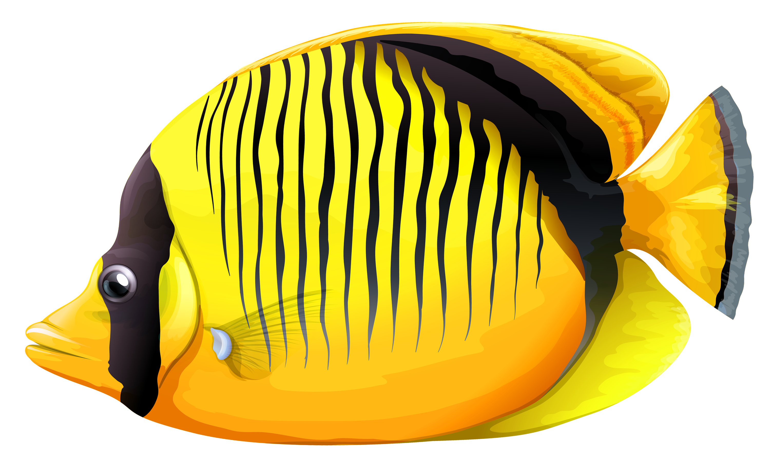 Fish clip art transparent background. Yellow butterfly png clipart