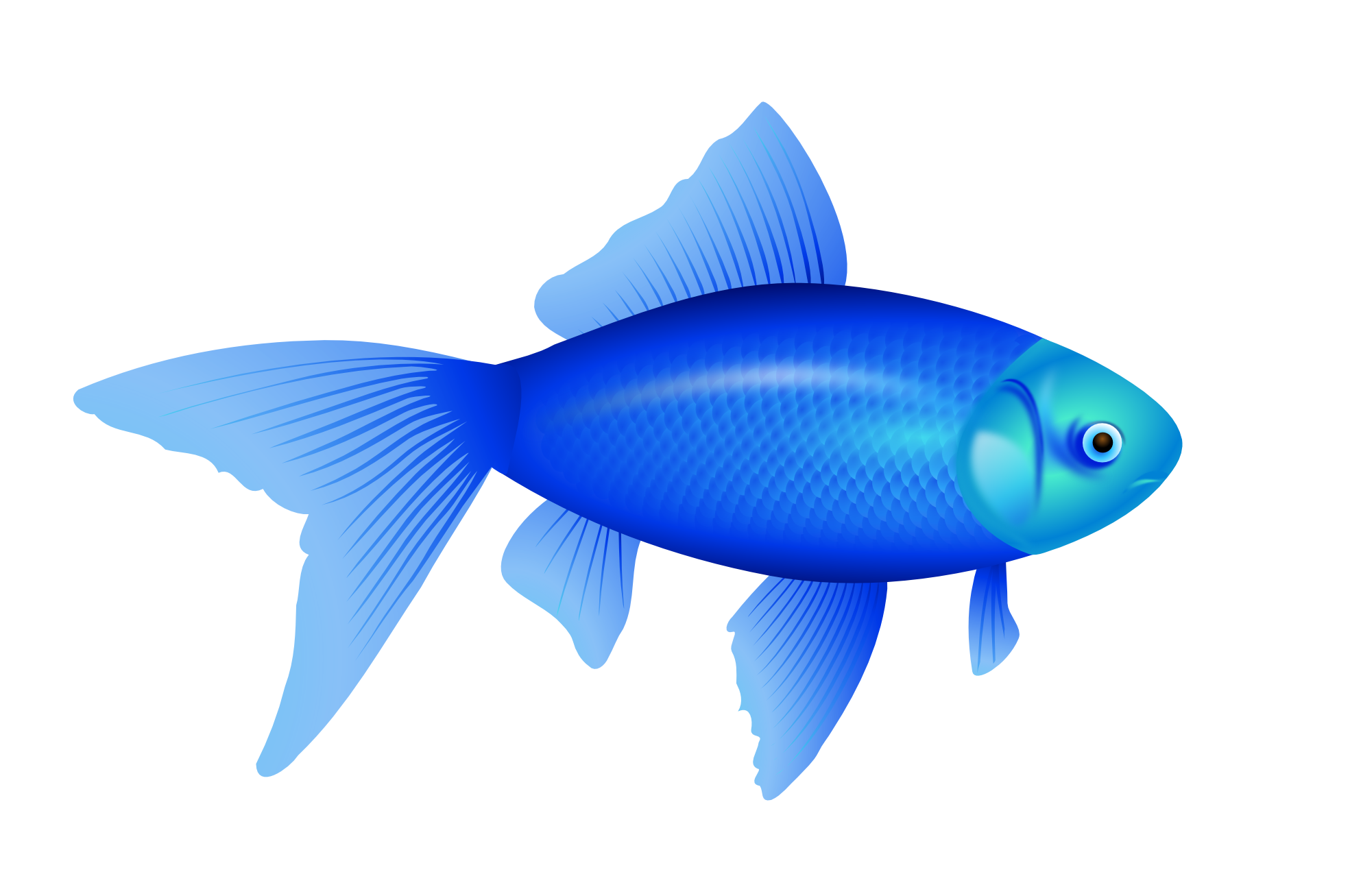 Fish clip art transparent background. Png pictures free icons