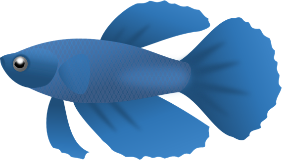 Fish clip art clear background. Blue png clipart vector