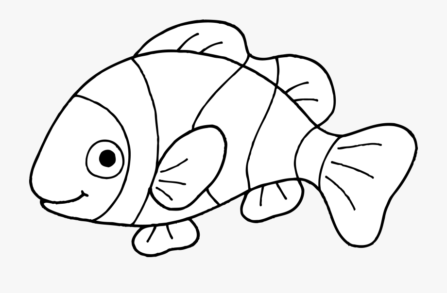 Fish muzzle. Download for free png
