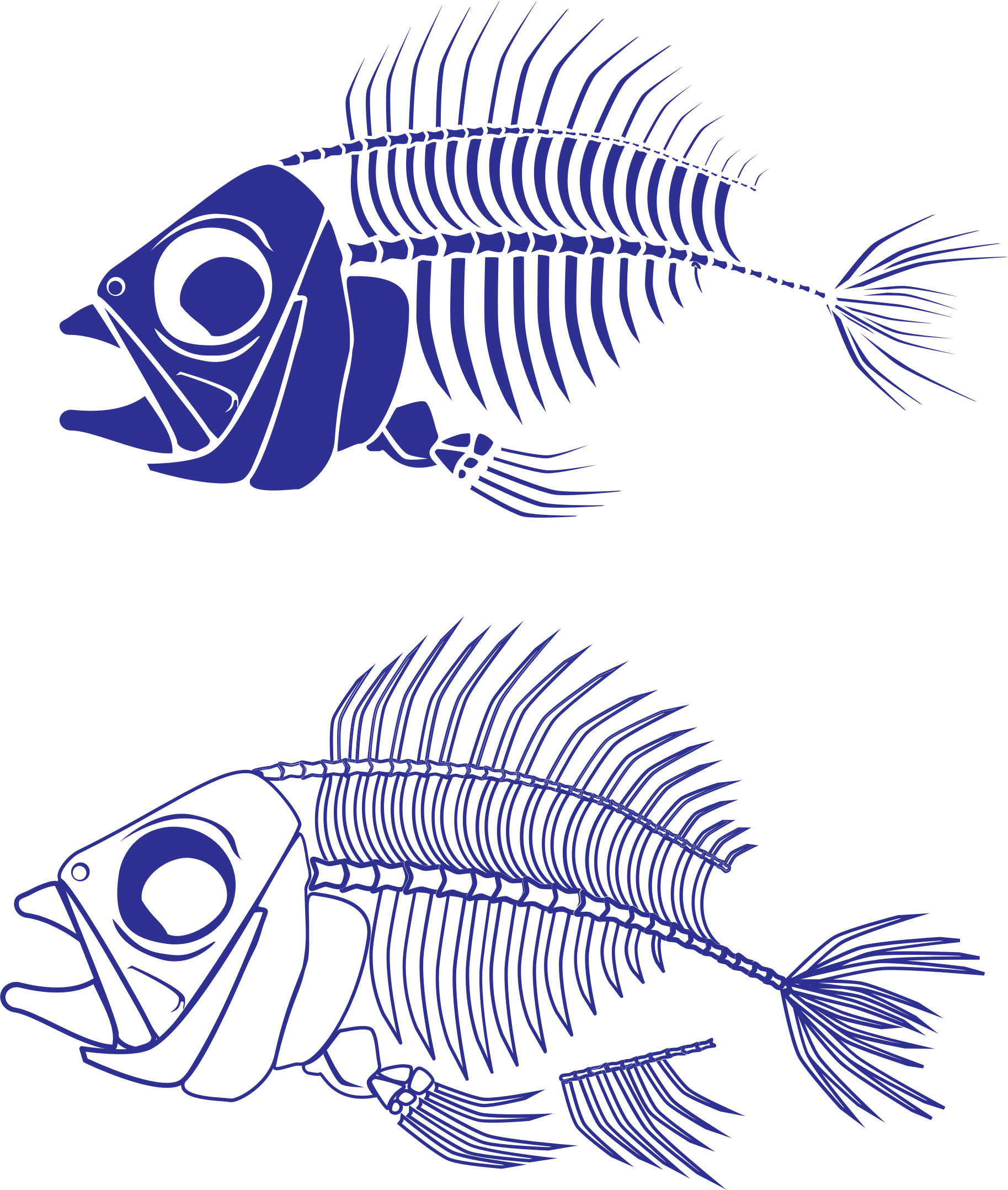 Fish skeleton png. Icons free and downloads