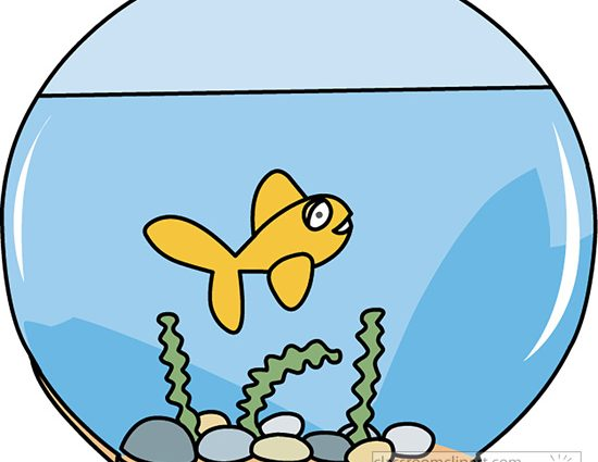 Fishbowl clipart fish swimming. Clip art bowl with