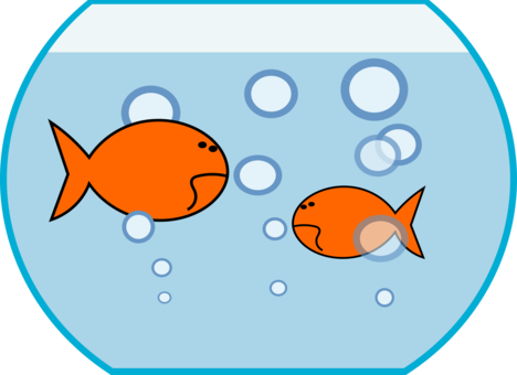 Bowl transparent water clipart. Koi goldfish mahi carp