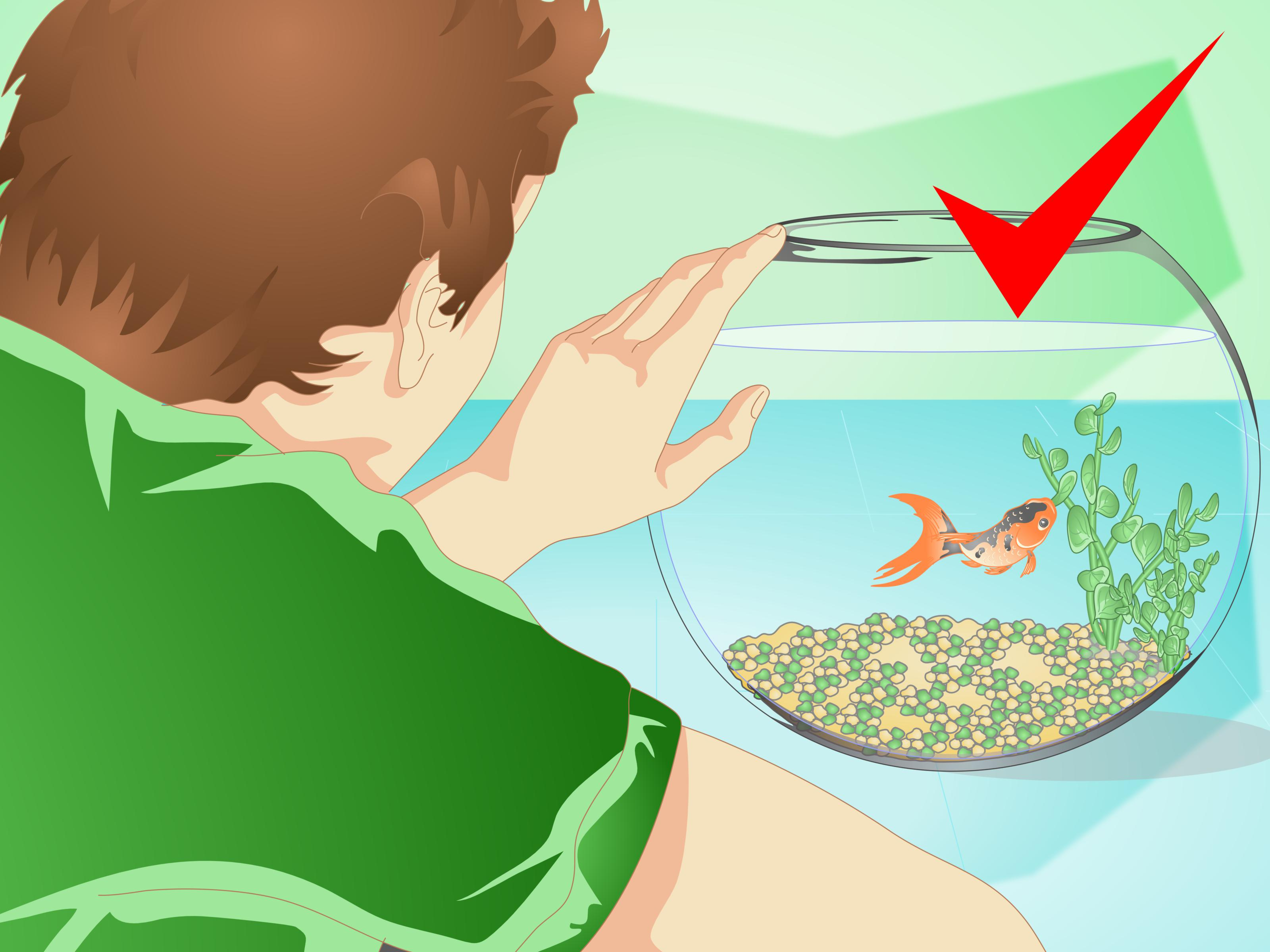 How to change the. Fishbowl clipart pet fish jpg black and white stock