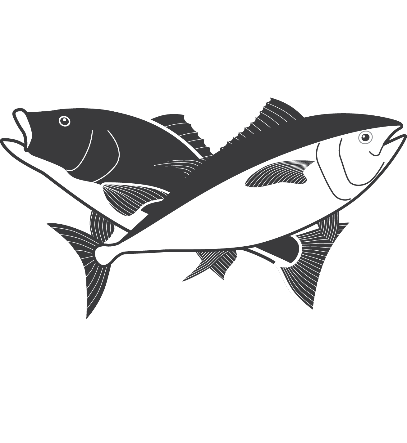 Fishing clip stringer. Pricing galveston party boats