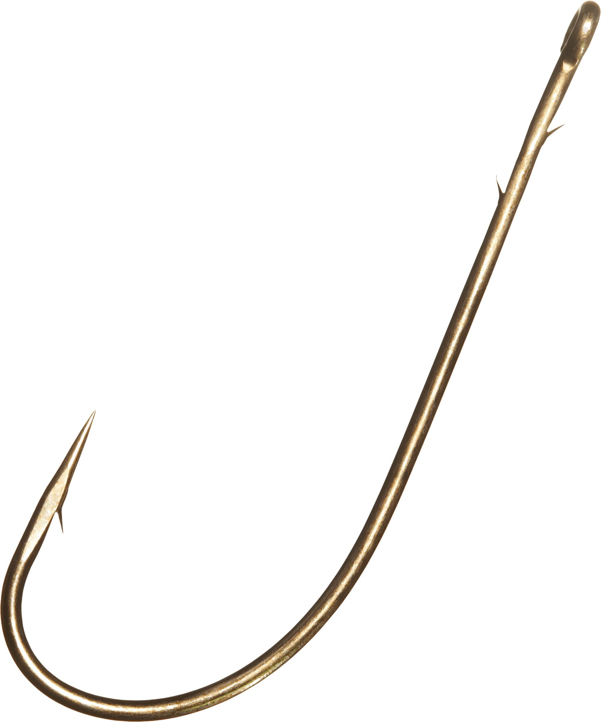 Fishing line and hook png. Large fish transparent stickpng