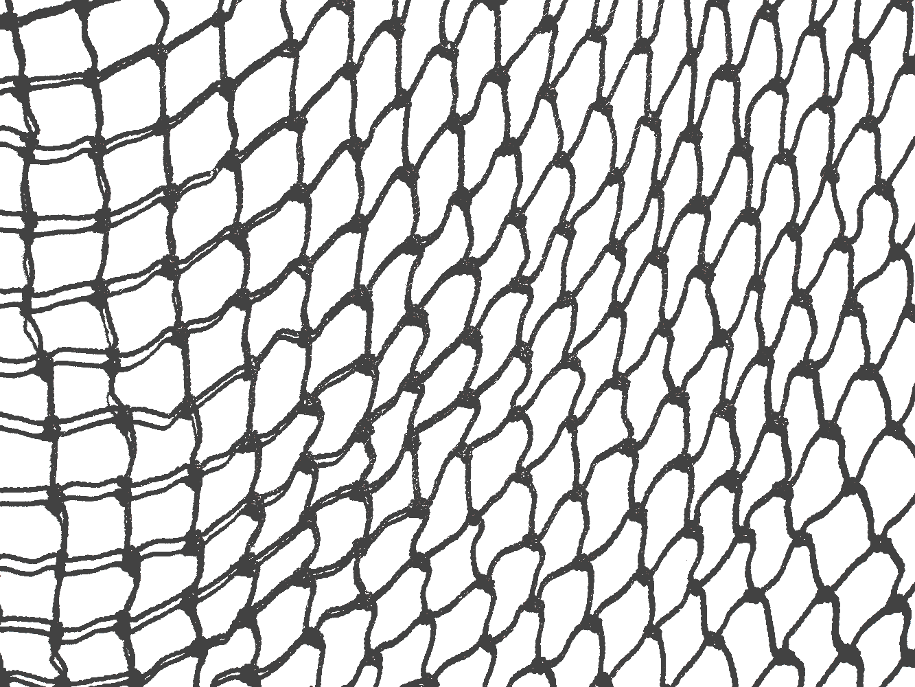 Fisherman clipart net drawing. Fishnet transparent draw clip freeuse