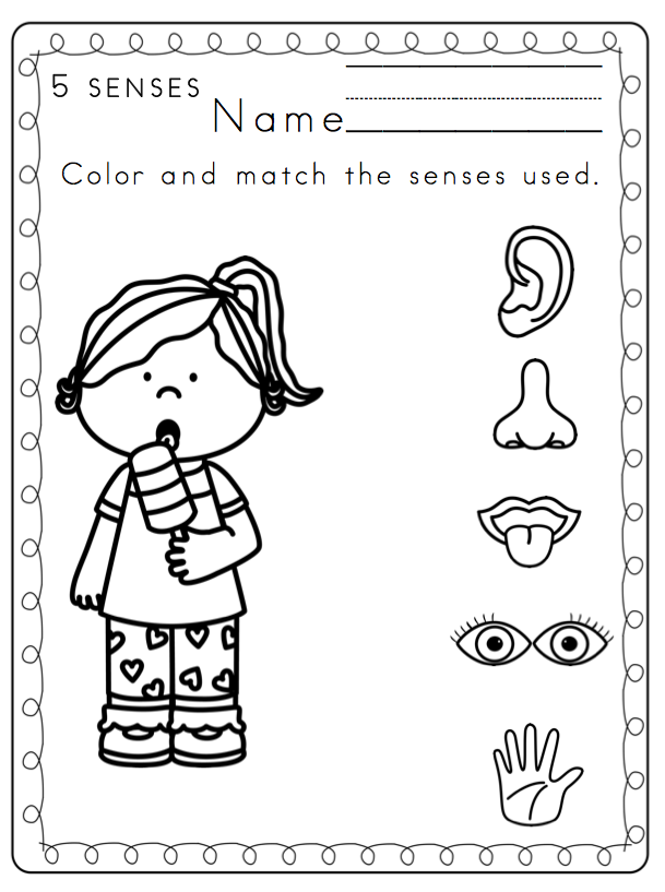 Five senses clipart coloring page. Pages free preschool