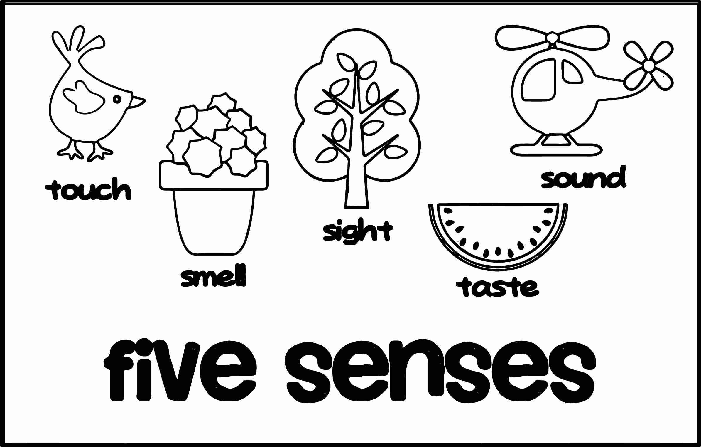 Five senses clipart coloring page. Photosheep me cute