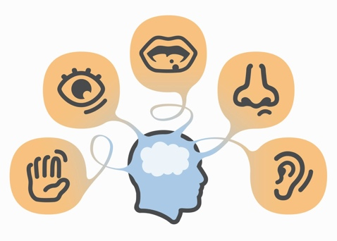 Five senses clipart imagery. Engaging the in event