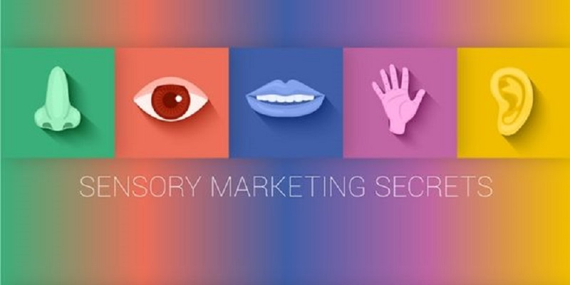 Five senses clipart sensory marketing. Include in your communication
