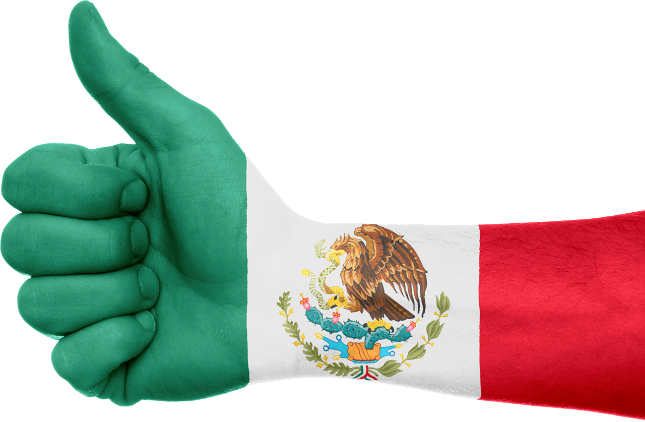 Flag of mexico png. Hand national pride image