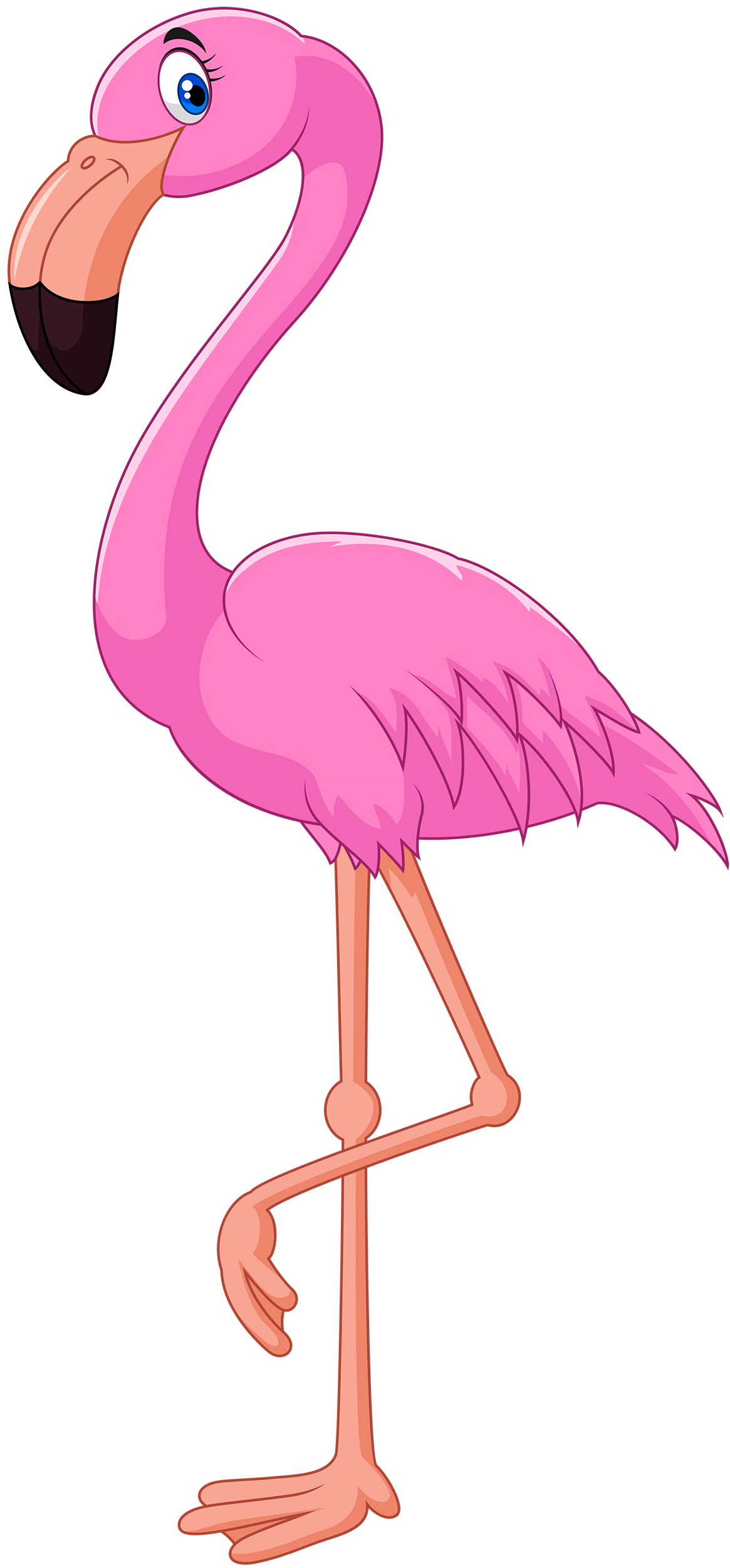 flamingo transparent whimsical