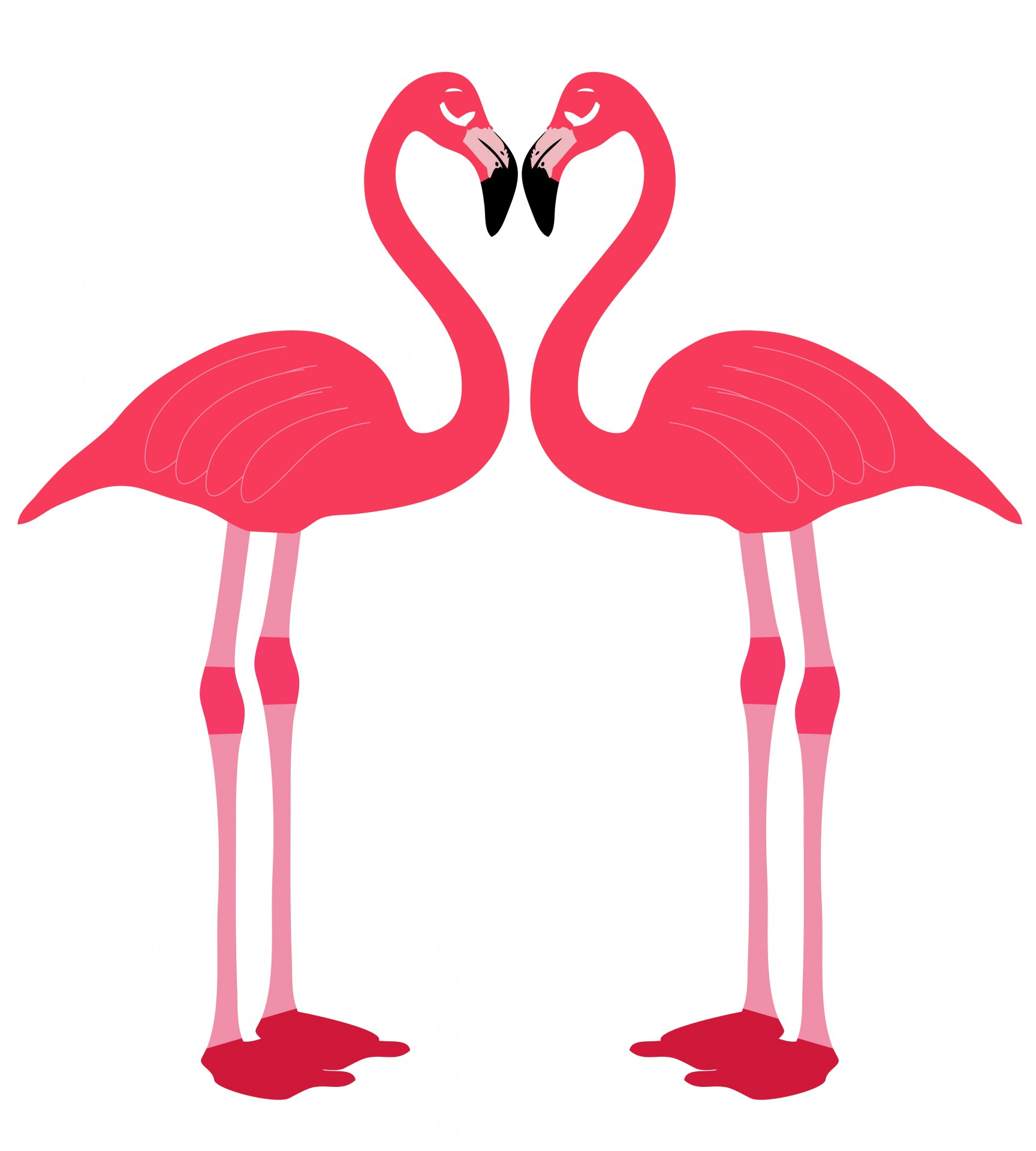 Flamingo clipart two. Birds love heart free
