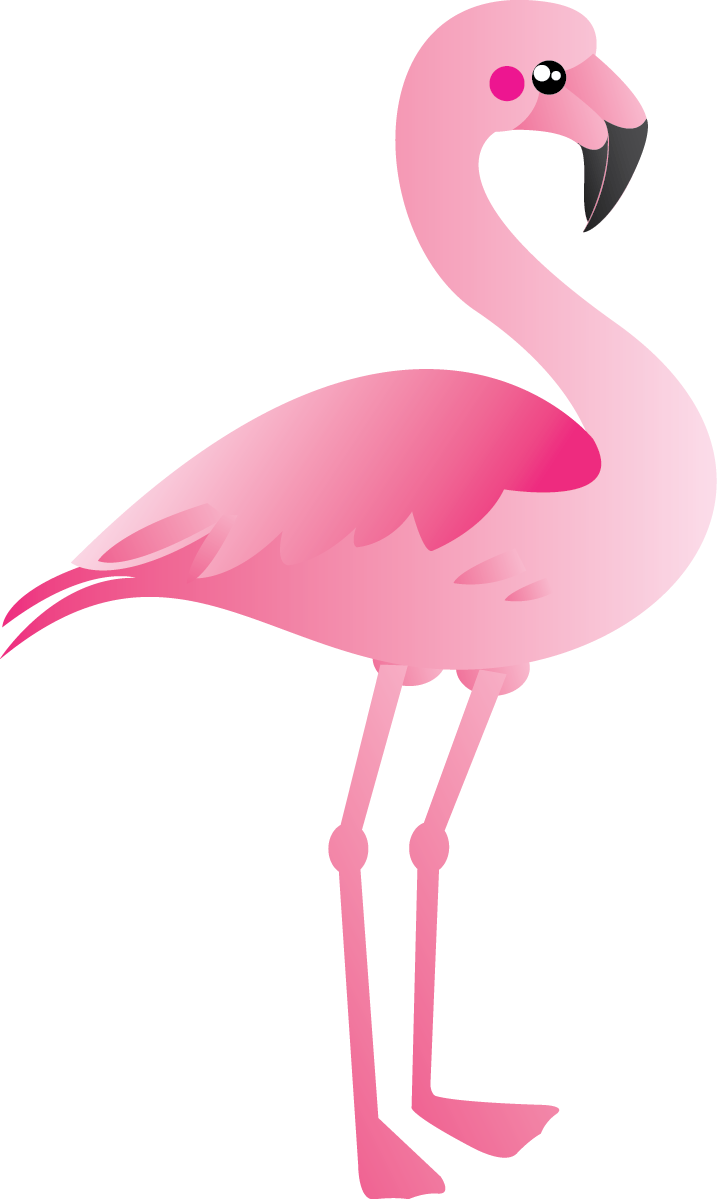flamingo transparent love