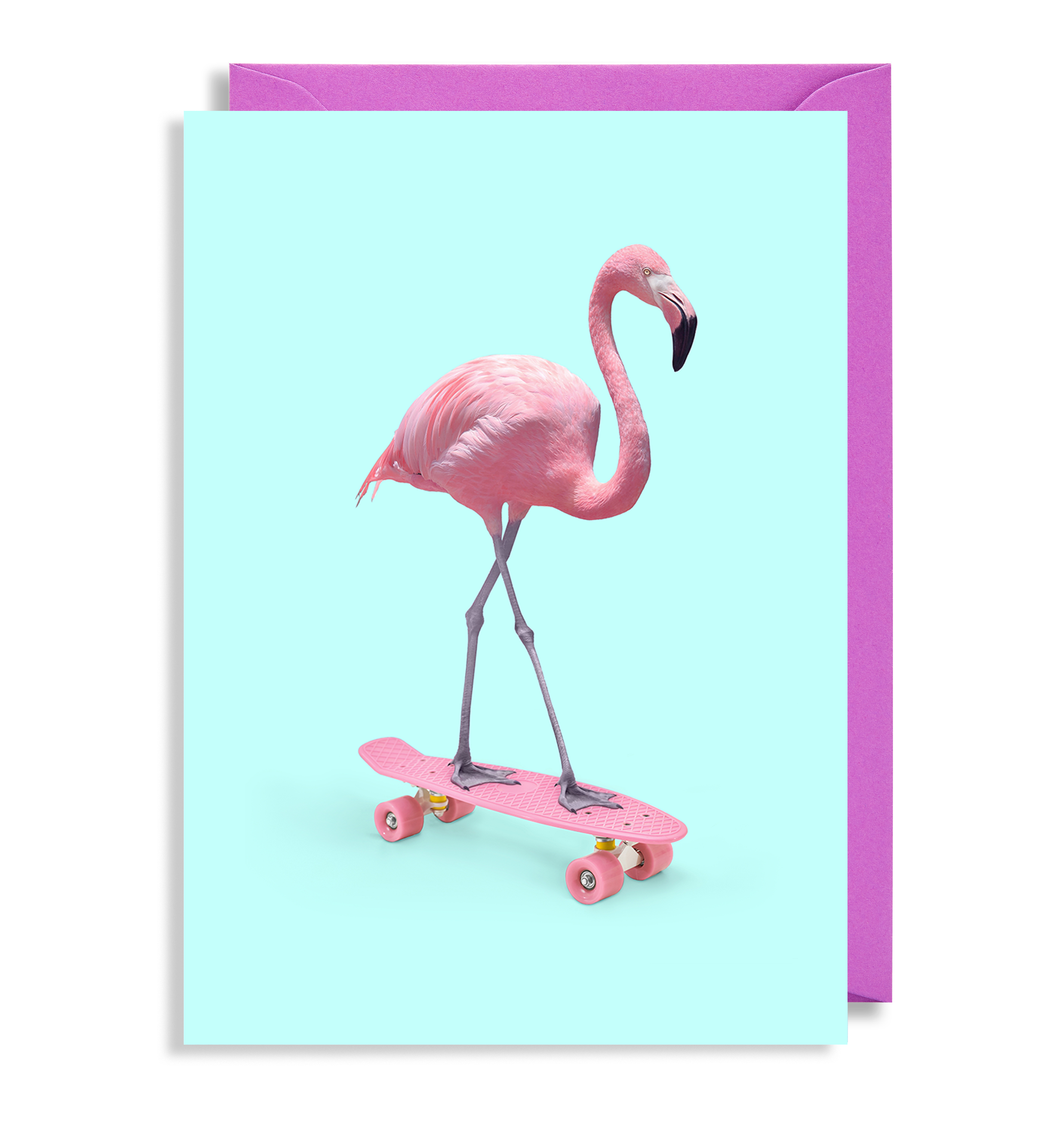Flamingo transparent happy anniversary. Skate greeting card by