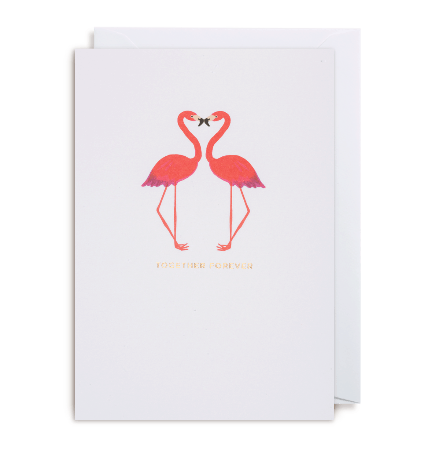 Flamingo transparent happy anniversary. Kissing card the paperdashery
