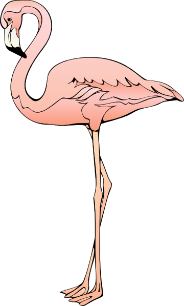 Flamingo vector png. Clip art at clker