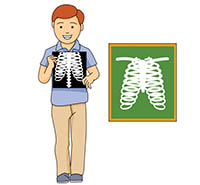 Flash clipart animated. Health gifs xray animation