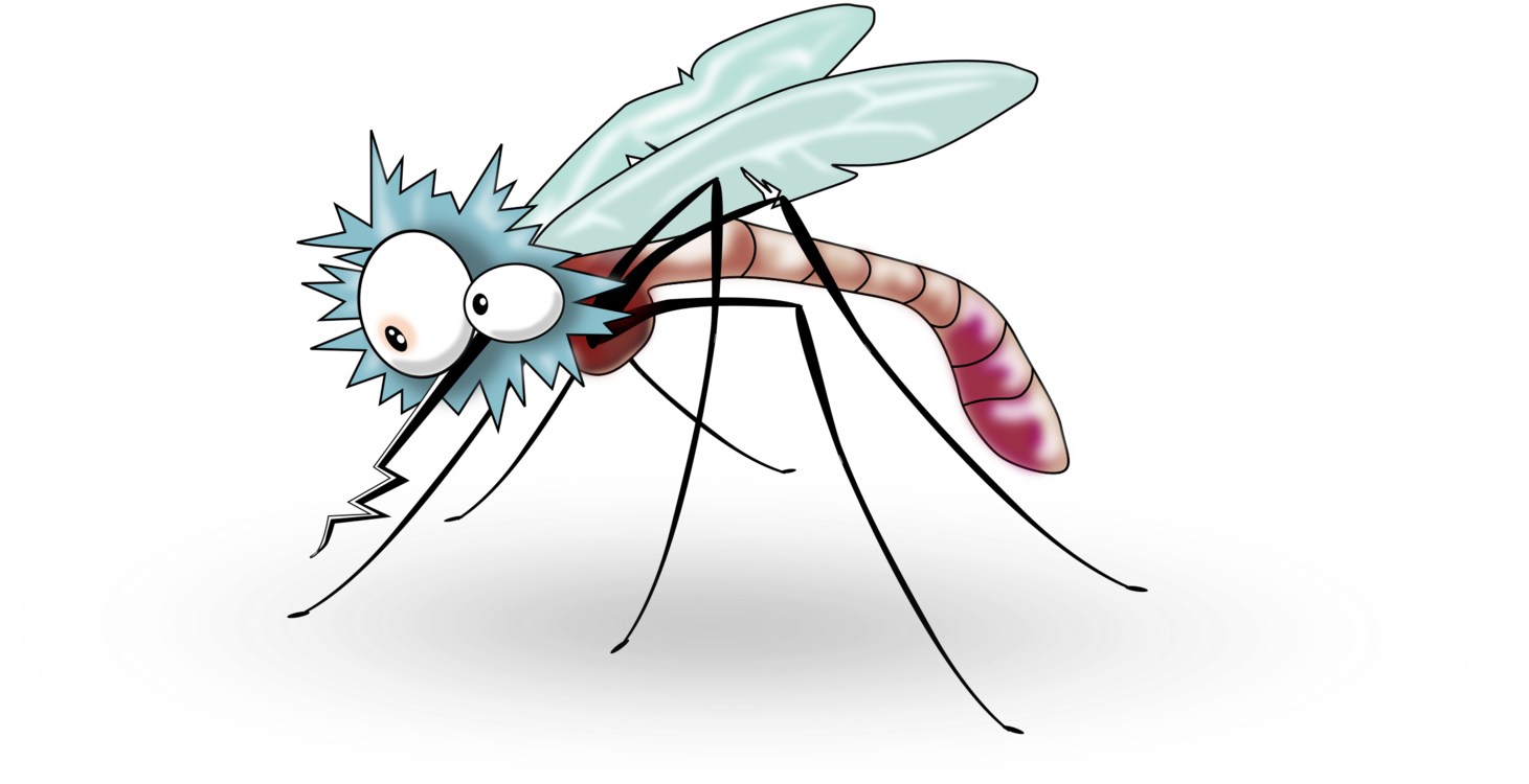 Flies clipart mosquito. Coil household insect repellents