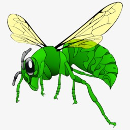 Flies clipart mosquito. Insect fly green png