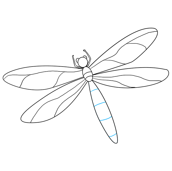 Drawing insects fly. How to draw a