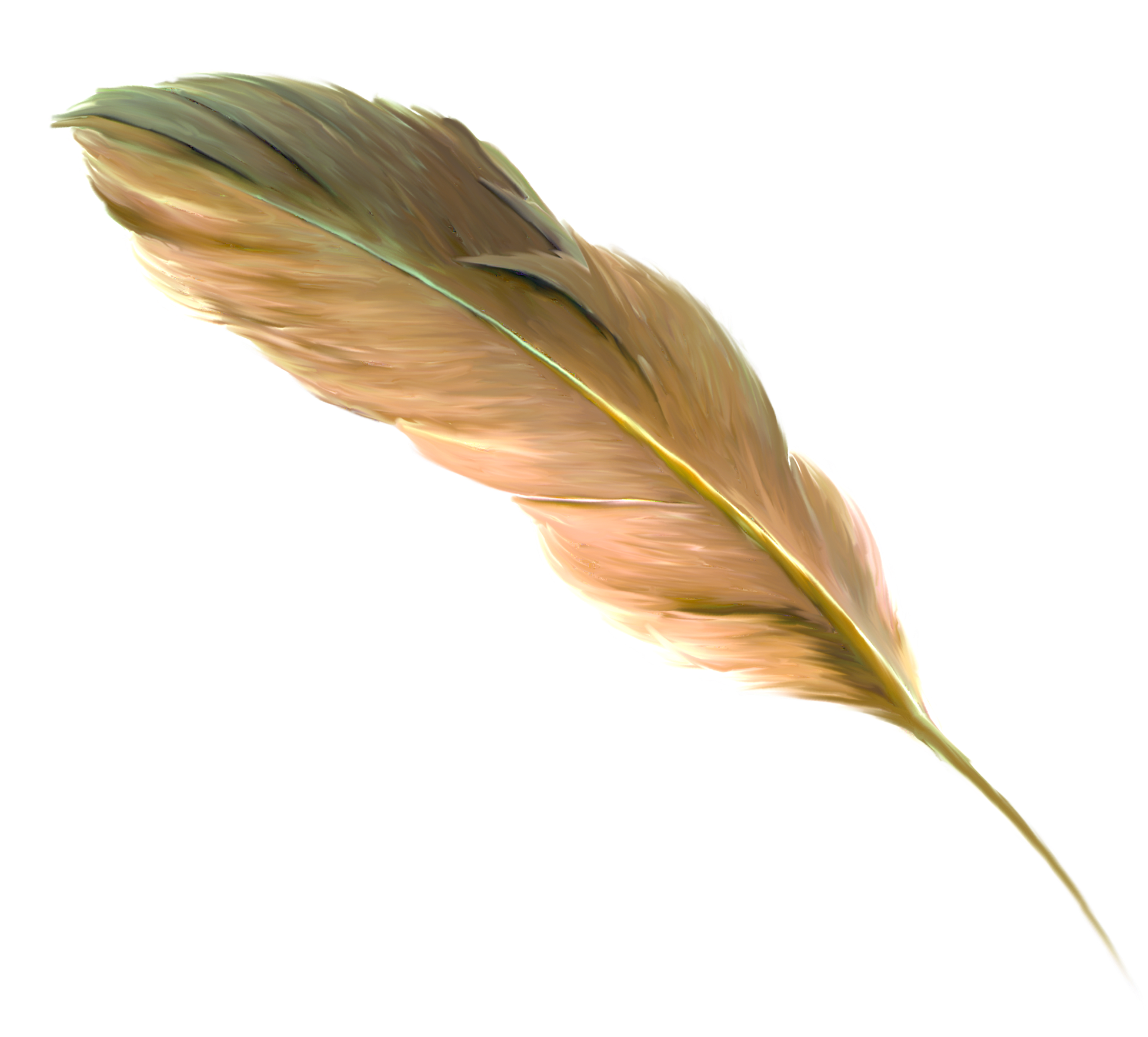 Floating feathers png. The feather brown transprent
