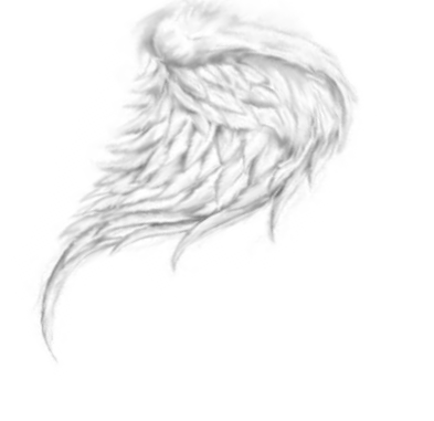 Floating feathers png.