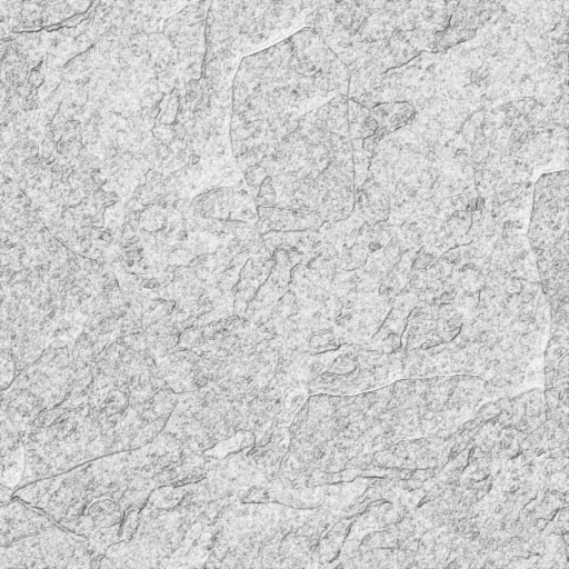 Rock texture png. Giving it substance guild