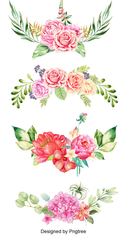 Watercolor flower images vectors. Chinese flowers png clip transparent library
